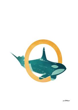 O-Orca