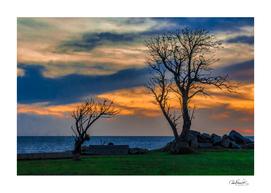 Sunset Scene at Waterfront Boardwalk, Montevideo Urug