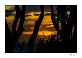 Silhouette Sunset Landscape Scene, Montevideo - Urugu