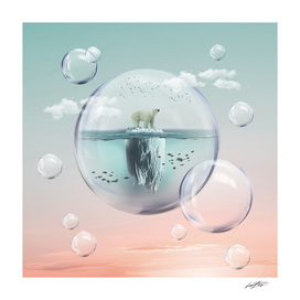 Polar Bear Bubble