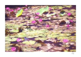 Pond of Lilacs