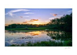 Reflecting Swamp Sunset