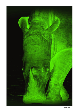 Rhino neon green 6085
