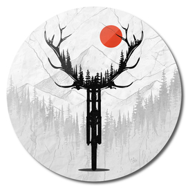 My Dear Bike