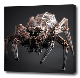 Abstract Spider