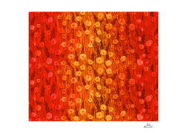 Dandelions Field, Floral Pattern, Red Orange Yellow