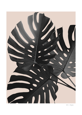 Tropical Monstera Finesse Glam #1 #tropical #decor #art