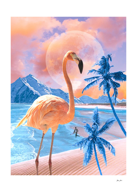 Flamingo Word #digitalmagic #flamingolove