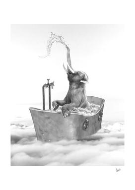 ELEPHANT BATH GLORIA SANCHEZ