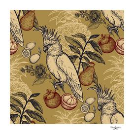 Golden Pear Cockatoo