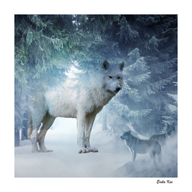 Magic Wolf and Snow