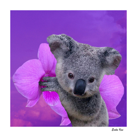 Koala and Orchid