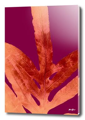 Fall Fern Leaf