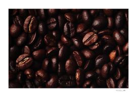 Close-up view of dark roasted coffee beans