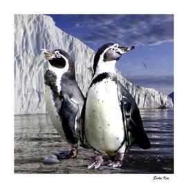 Penguins and Glacier