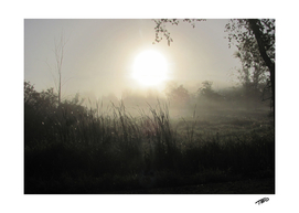 Morning Myth