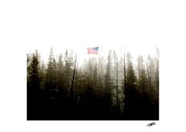 A Flag Flys Free