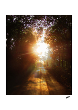 Glory Road Into The Light