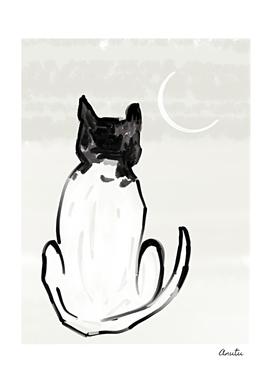 Midnight Moon Cat