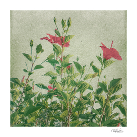 Botanical Vintage Style Motif ArtworK 2