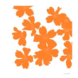 Primrose pattern in orange