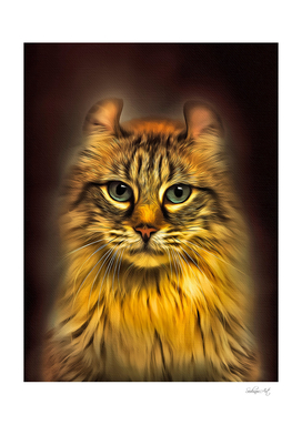 American Curl Cat Portrait