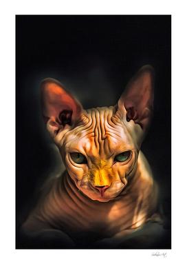 Minskin Cat Portrait