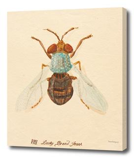 Bug #6