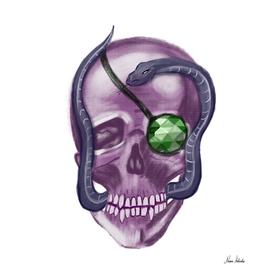 Rich skull