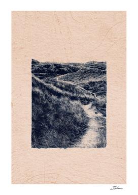 CLASSIC BLUE / Dune Path