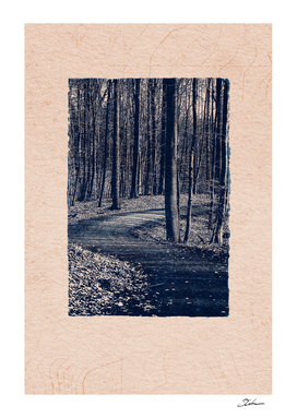 CLASSIC BLUE / Forest Path
