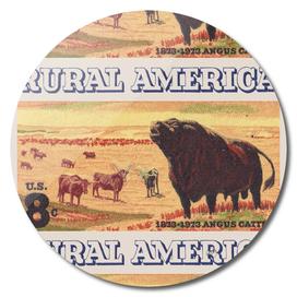 Rural America vintage US post stamp