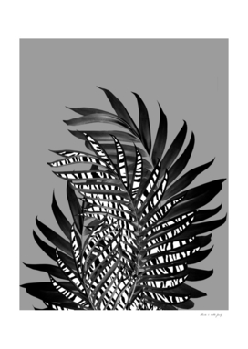 Palm Leaves with Tiger Stripe Glam #1 #tropical #decor #art