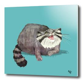 Manul Cat 3