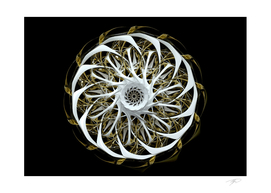 3d Abstract art  surreal flower