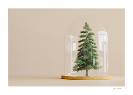 Tree under glass dome