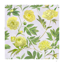 Yellow Peony Floral