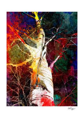 Birch Tree in Color