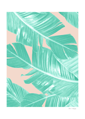 Tropical Summer Banana Leaves Dream #1 #decor #art
