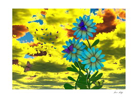 Butterflies and Blue Daisies