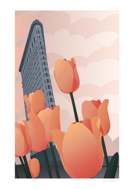 Flatiron Building Tulip