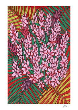 Pink Cone Ginger, Tropical Flowers Floral Art