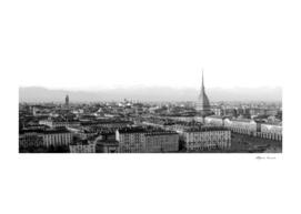 Turin skyline in spring - mole Antonelliana