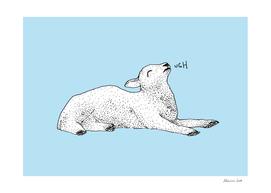 Exasperated Lamb