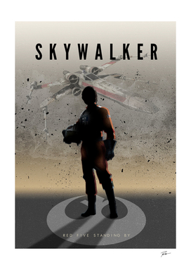 Commander Skywalker