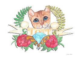 Absynnian cat art