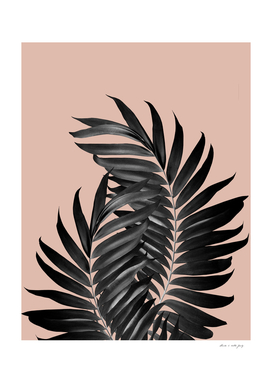 Palm Leaves Pale Terracotta Black Vibes #1 #tropical #decor