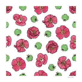 Poppies flowers and seeds pattern