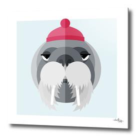 Walrus Illustration