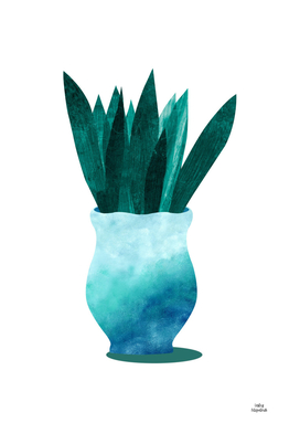 Blue Pot with Snake Plant